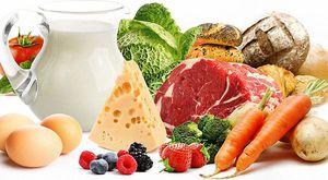 Белковые продукты — 10 лучших продуктов с высоким содержанием белка