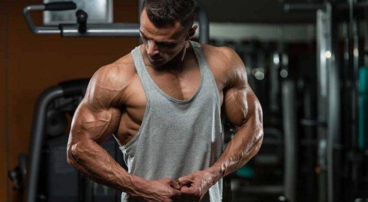 quali sono i migliori steroidi